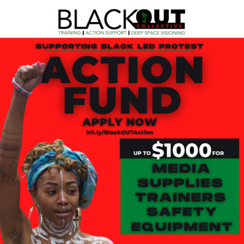 This image is the flyer for the Action Fund. It has the name, link to apply, and what the fund can be used for.